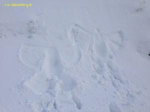 die obligatorischen Schnee-Engel dürfen auch nicht fehlen